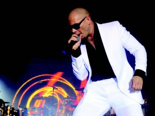 vodka-pitbull1