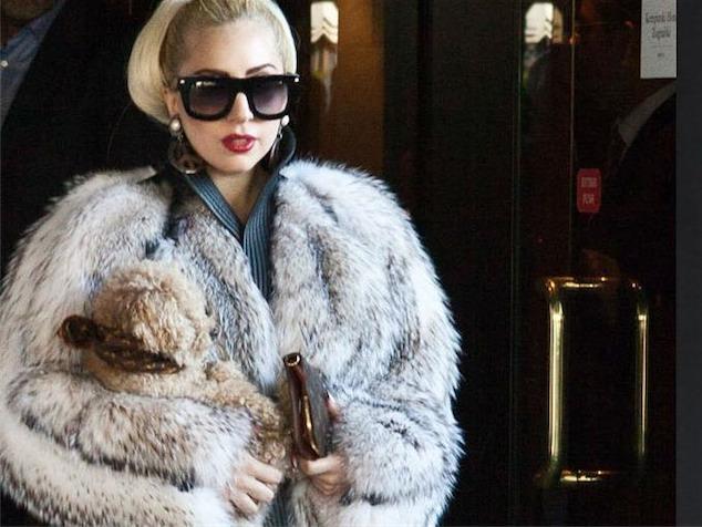 imagen Lady Gaga causa revuelo ante PETA