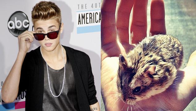 imagen Justin Bieber acusado de crueldad animal