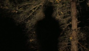 Nick Cave Vid