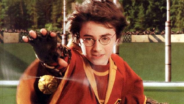 imagen Podría haber una nueva película de Harry Potter enfocada en el Quidditch