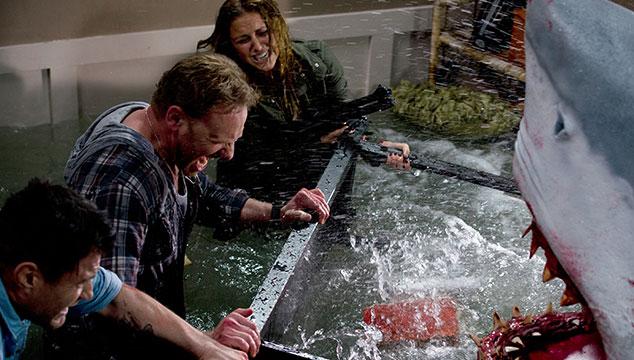 imagen Va a haber una segunda parte de 'Sharknado', protagonizada por Ian Ziering y Tara Reid