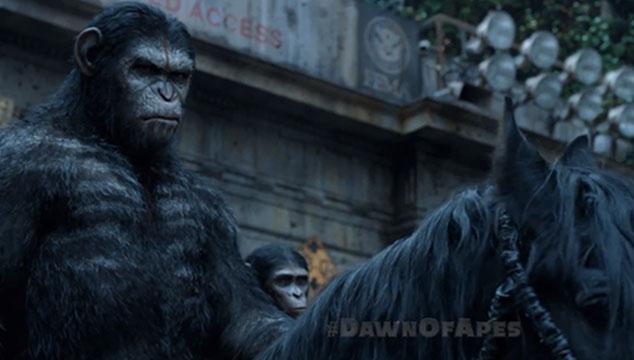 imagen Los simios se preparan para la guerra en este nuevo anuncio televisivo de 'Dawn of the Planet of the Apes'