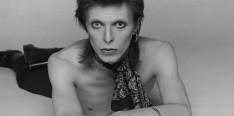 Bowie-David