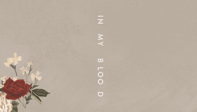 Escucha In My Blood Un Nuevo Tema De Shawn Mendes